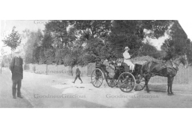 BET 221 Rev.Thornton. Wm Timberlake driving carriage 16-18