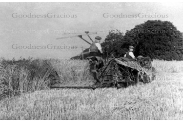 bet_585__bylett_john_and_ted_haymaking