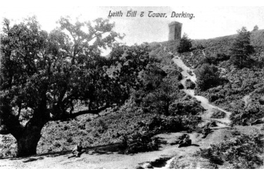 col_61_leith_hill_tower_6-1-53