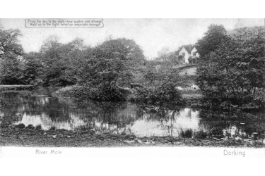 dor_12_near_lower_boxhill_farm_1907